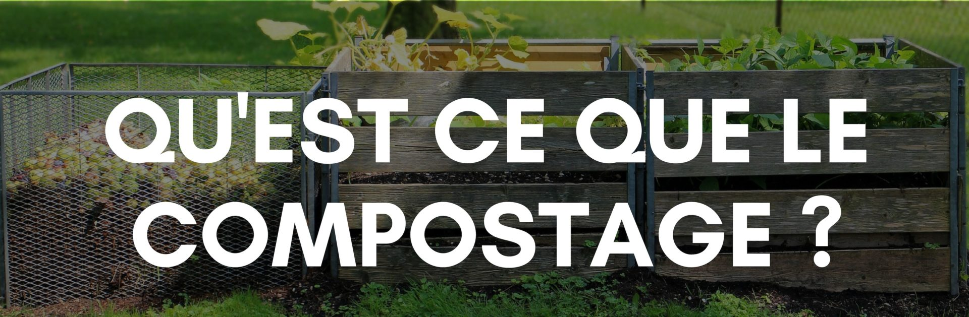 compostage-2
