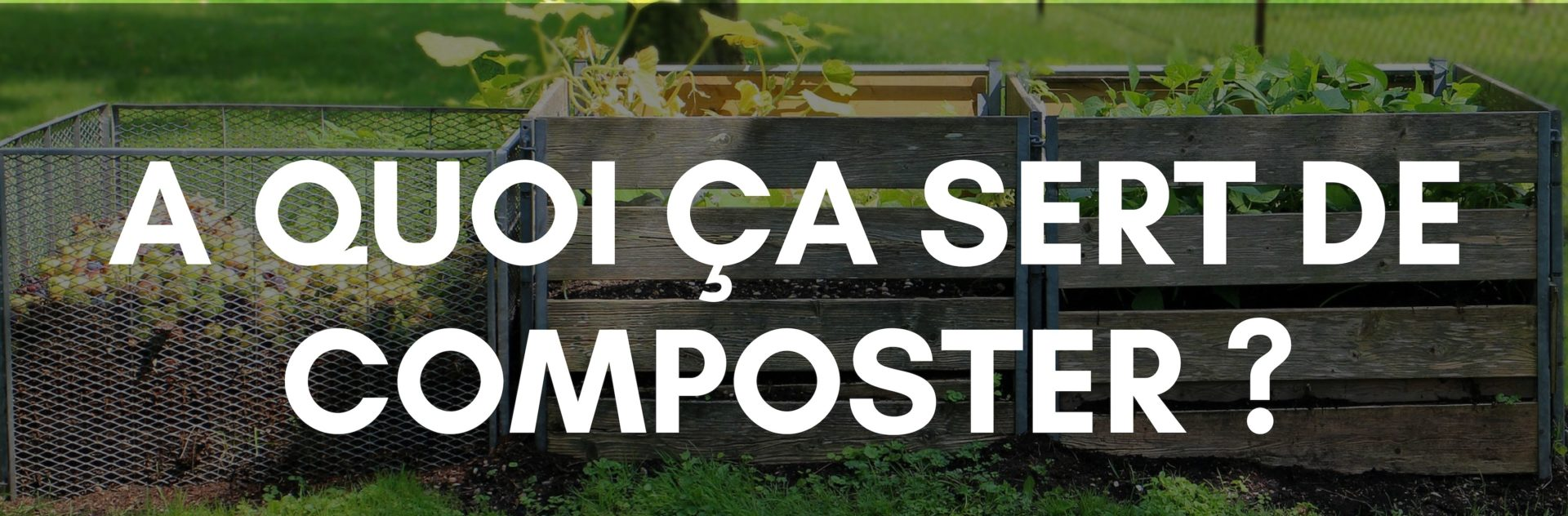 compostage-3